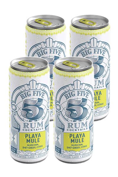 Big Five - Playa Mule